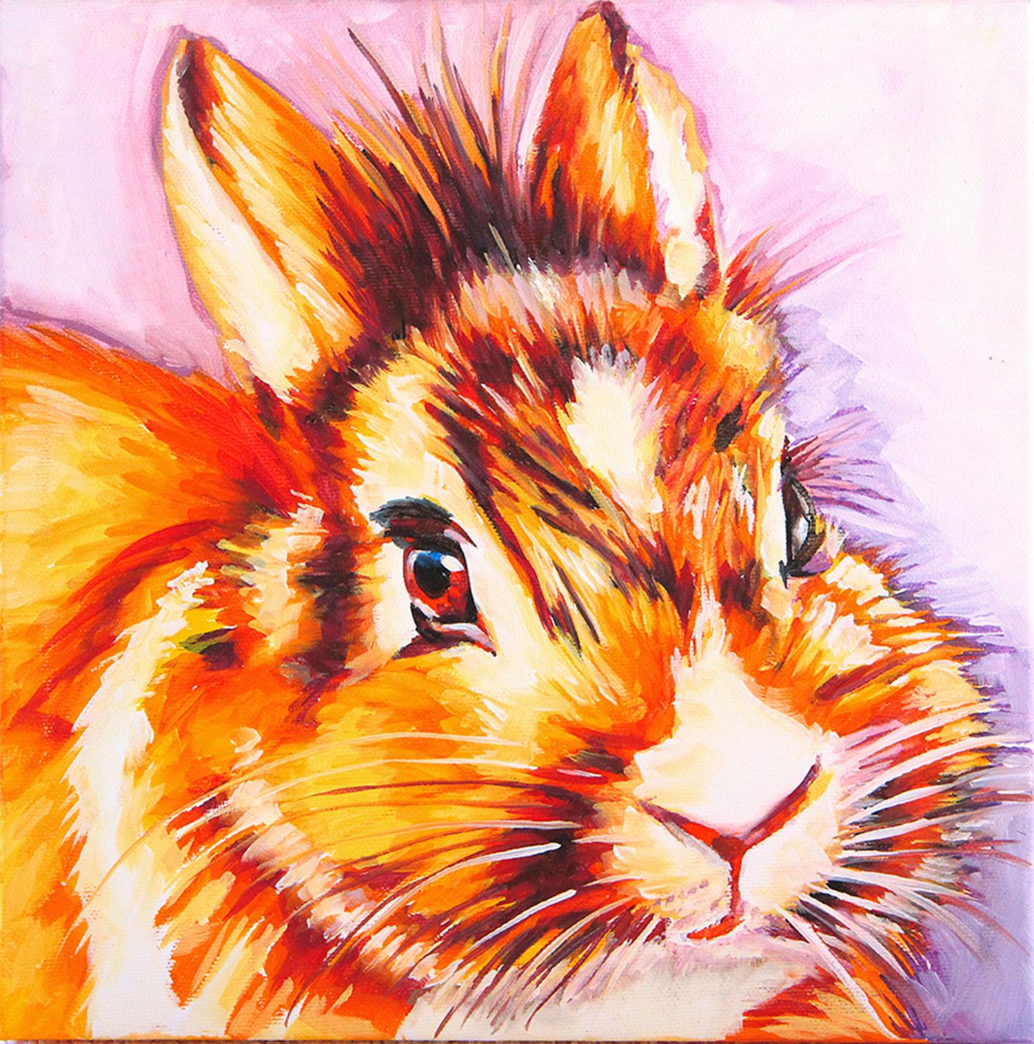 itratti-di-animali-su-commissione-coniglio