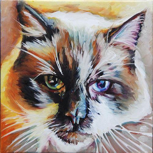 Kika cat